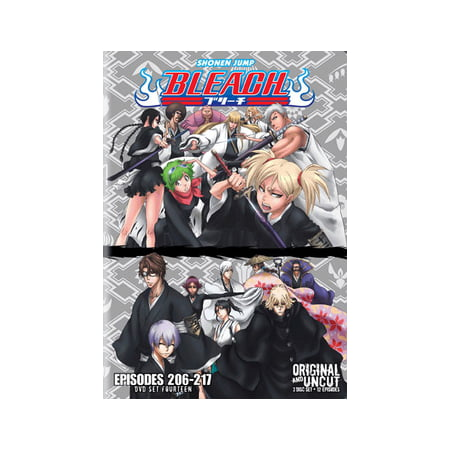 BLEACH BOX SET 14 (DVD/UNCUT/3 DISC/VIVA) (DVD)