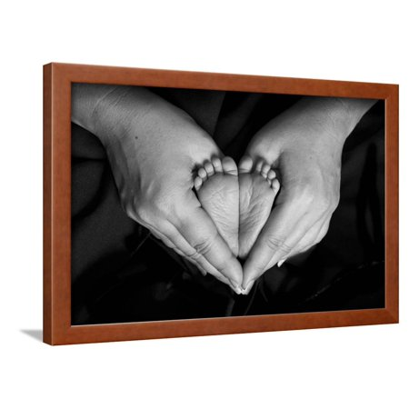 Hands And Baby Feet In A Heart Framed Print Wall Art By Nora