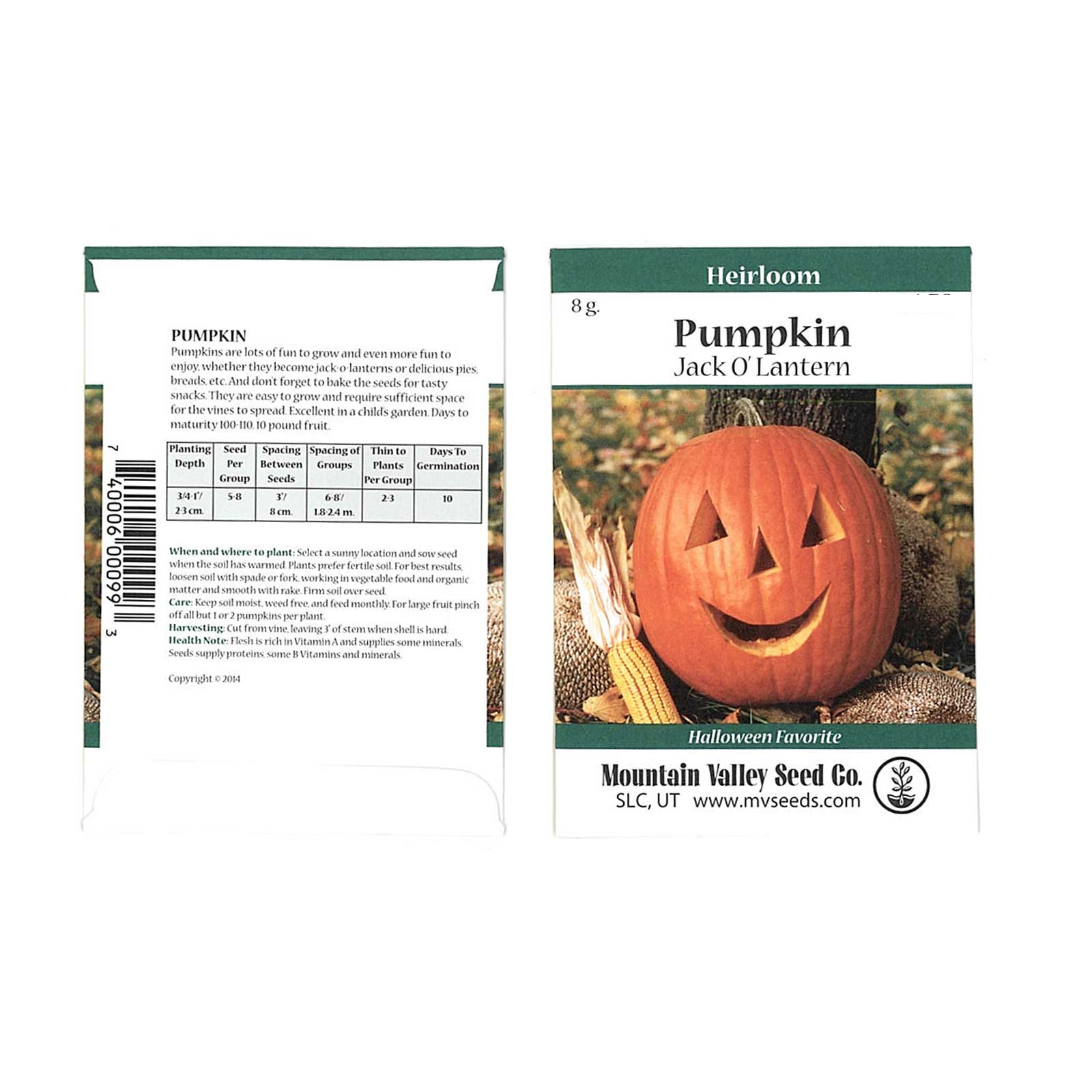 Pumpkin Garden Seeds - Jack O'Lantern Variety - 8 Gram Packet - Non-GMO, Heirloom Pumpkins - Orange - Vegetable Gardening Seeds