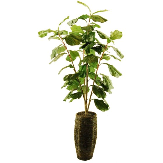 56 artificial fiddle leaf fig tree in a scalloped rope basket with spanish moss