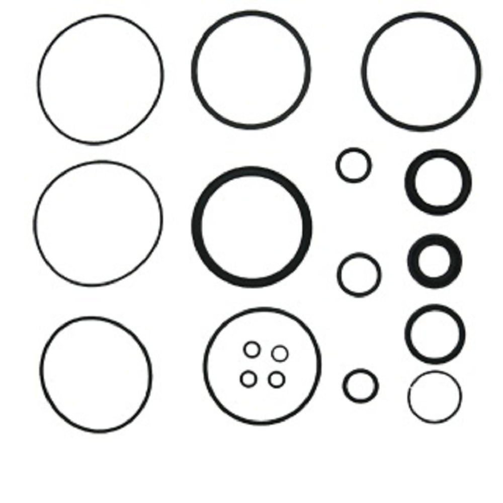 DGPN3301B Power Steering Cylinder Seal Kit for Ford