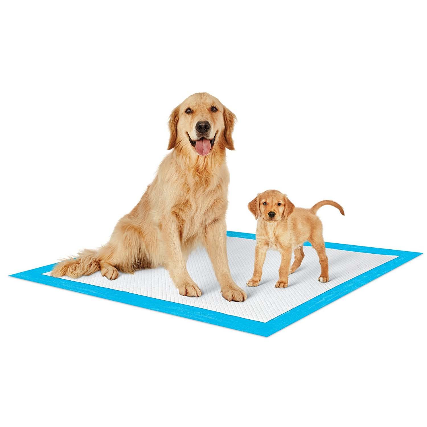 Petsworld heavy absorbent puppy training pads, 28 in x 34 in, 300 count