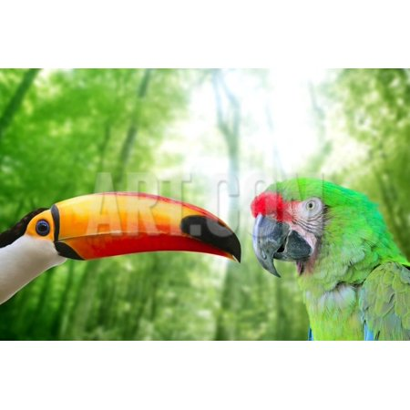 Toco Toucan And Military Macaw Green Parrot Print Wall Art By - Green Macaws Framed