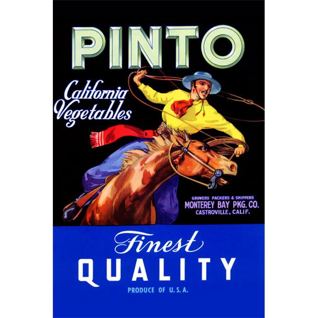 Buy Enlarge 0-587-21951-3P12x18 Pinto Califonia Vegetables- Paper Size P12x18