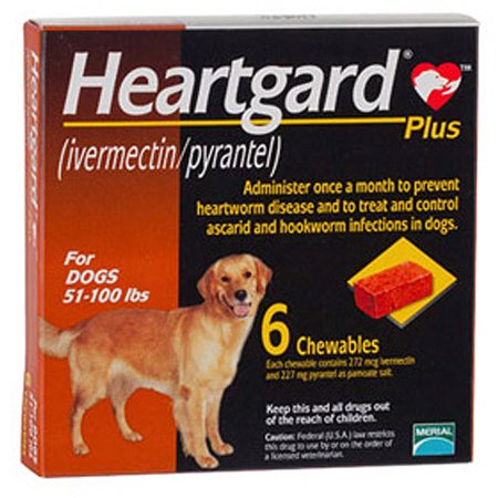 Heart worm coupon