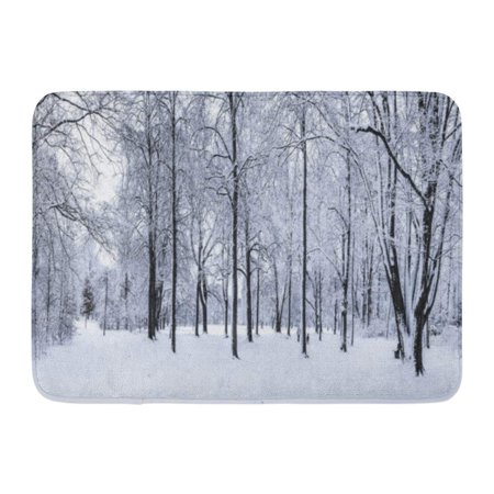 GODPOK Blue Beauty Black Scene Winter Park with Snow Covered Trees White Snowy Blizzard Rug Doormat Bath Mat 23.6x15.7 inch (Door Covers For Winter)