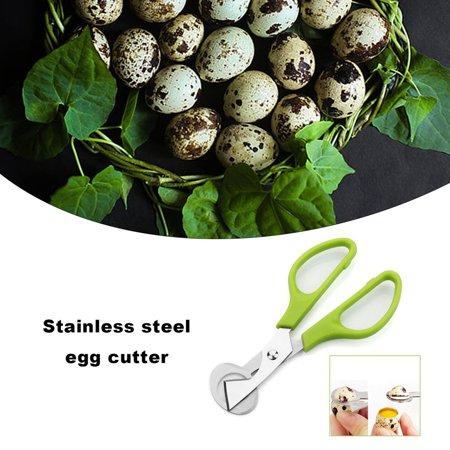Practical Design Household Kitchen Stainless Steel Quail Egg Shells Scissors - image 7 of 8