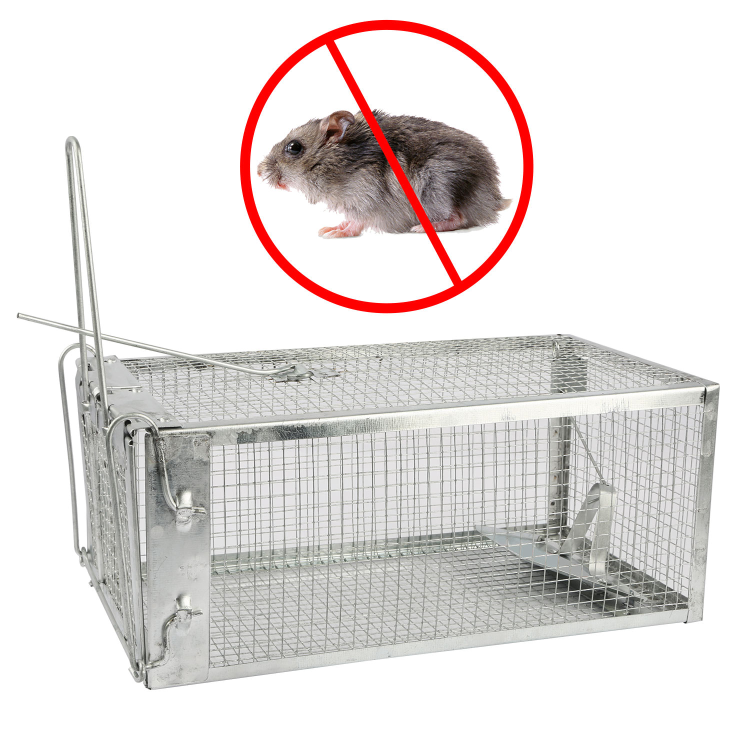 Animal Trap Steel Cage