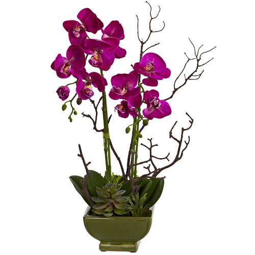 Nearly Natural Orchid and Succulent Arrangement