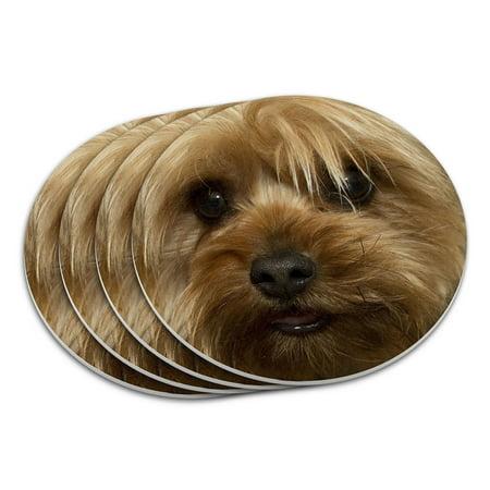 Yorkshire Terrier Yorkie Dog Coaster Set