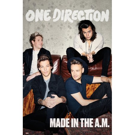 One Direction Made In The A.M (Global) Poster Print (24 x