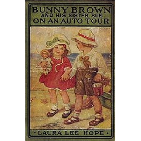 Bunny Brown and His Sister Sue at Aunt Lu's City Home - eBook