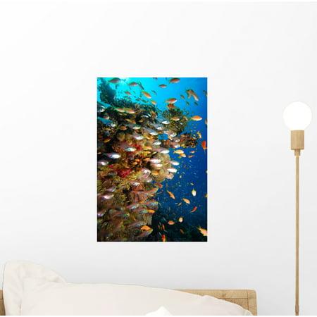 Underwater Coral Reef Wall Mural Decal Sticker, Wallmonkeys Peel & Stick Vinyl Graphic (12 in H x 8 (Underwater Wall Murals)