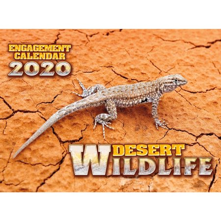 Smith Southwestern Southwest Wildlife Wall Calendar Printed on High Quality FSC Certified Paper with Full Color Pages - 12 Month ()