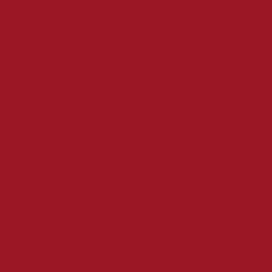 Tru-Ray Sulphite Construction Paper, 18 x 24 Inches, Scarlet, 50 Sheets