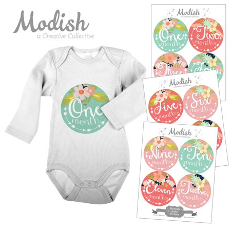 Modish Monthly Baby Stickers, Girl, Floral, Tribal Flowers, Arrows, Pink, Mint, Baby Photo Prop, Baby Shower Gift, Baby Book Keepsake