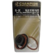 Champion Irrigation RK-30C .75 in. Anti-Siphon Valve Repair Kit