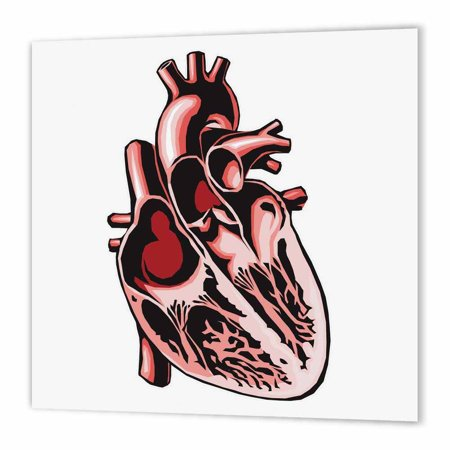 3dRose Halloween Half Human Heart, Iron On Heat Transfer, 10 by 10-inch, For White Material](Halloween Usa Coupons Printable)