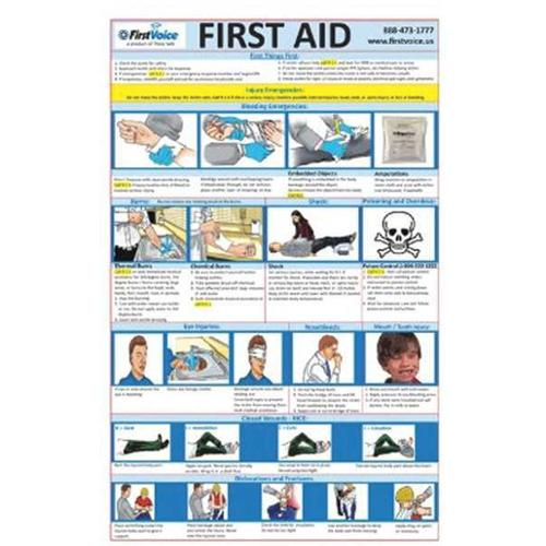 FIRST VOICE FAC100 First Aid Reference Cards, Laminated, PK10 by First Voice