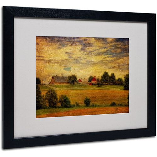 "Trademark Fine Art ""Summer Farm"" by Lois Bryan, Black Frame"