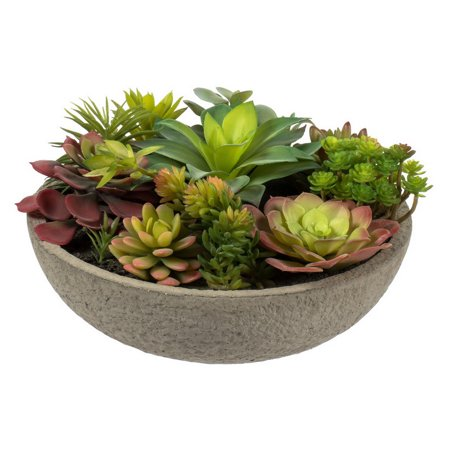 Vickerman 524381 - Mixed Succulent in Concrete Pot (FH182801) Home Office Succulents ()