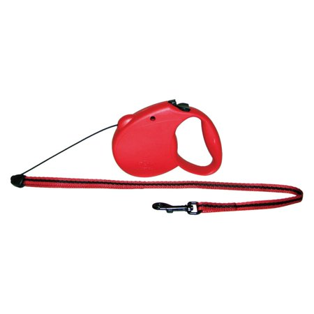 (Flexi USA Retractable Dog Leash, Medium, Blue)
