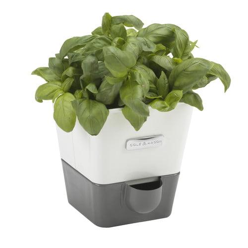 Cole & Mason Indoor Herb Garden Self-Watering Carbon Steel Pot Planter