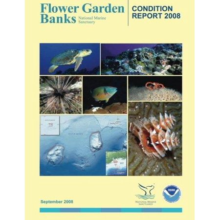 Flower Garden Banks National Marine Sanctuary Condition Report 2008