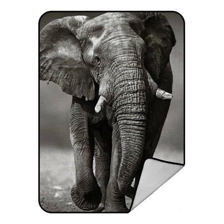 GCKG Black And White Style Old Elephant Fleece Blanket Crystal Velvet Front and Lambswool Sherpa Fleece Back Throw Blanket 58x80inches