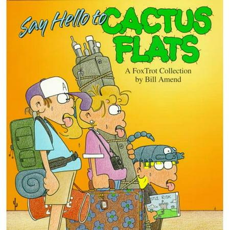 Say Hello to Cactus Flats