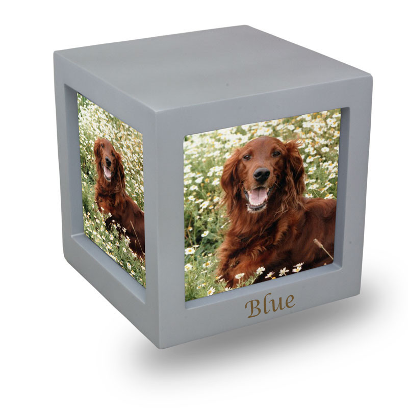 Wood Memorial Urn For Cats And Dogs - Medium 85 Pounds -  Silver Photo Frame