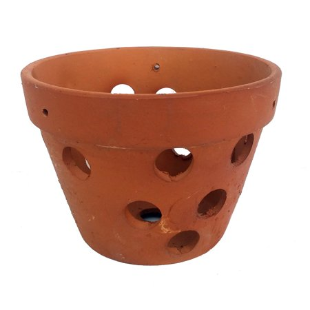 Hand Made Terracotta Clay Orchid Pot - 4.5
