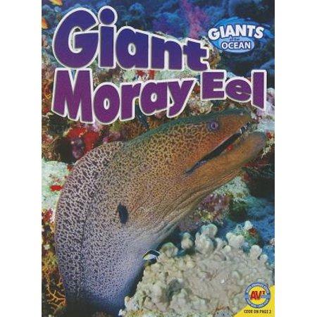 Moray Eel (Giant Moray Eel )