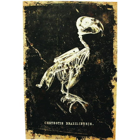 Skeleton Bird Canvas without Frame Halloween - Halloween Birds