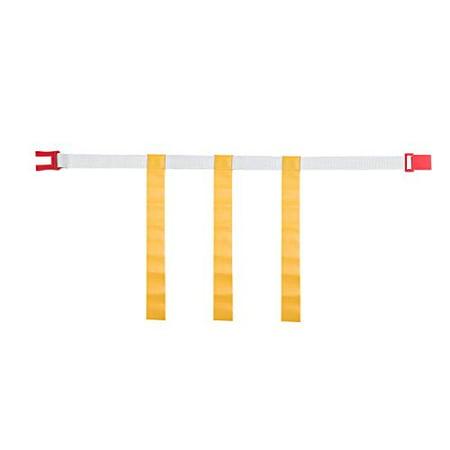 Magnetic Professional Football (Champion Sports Adjustable Magnetic Flag Football Belts: Flag Football Belt Set)