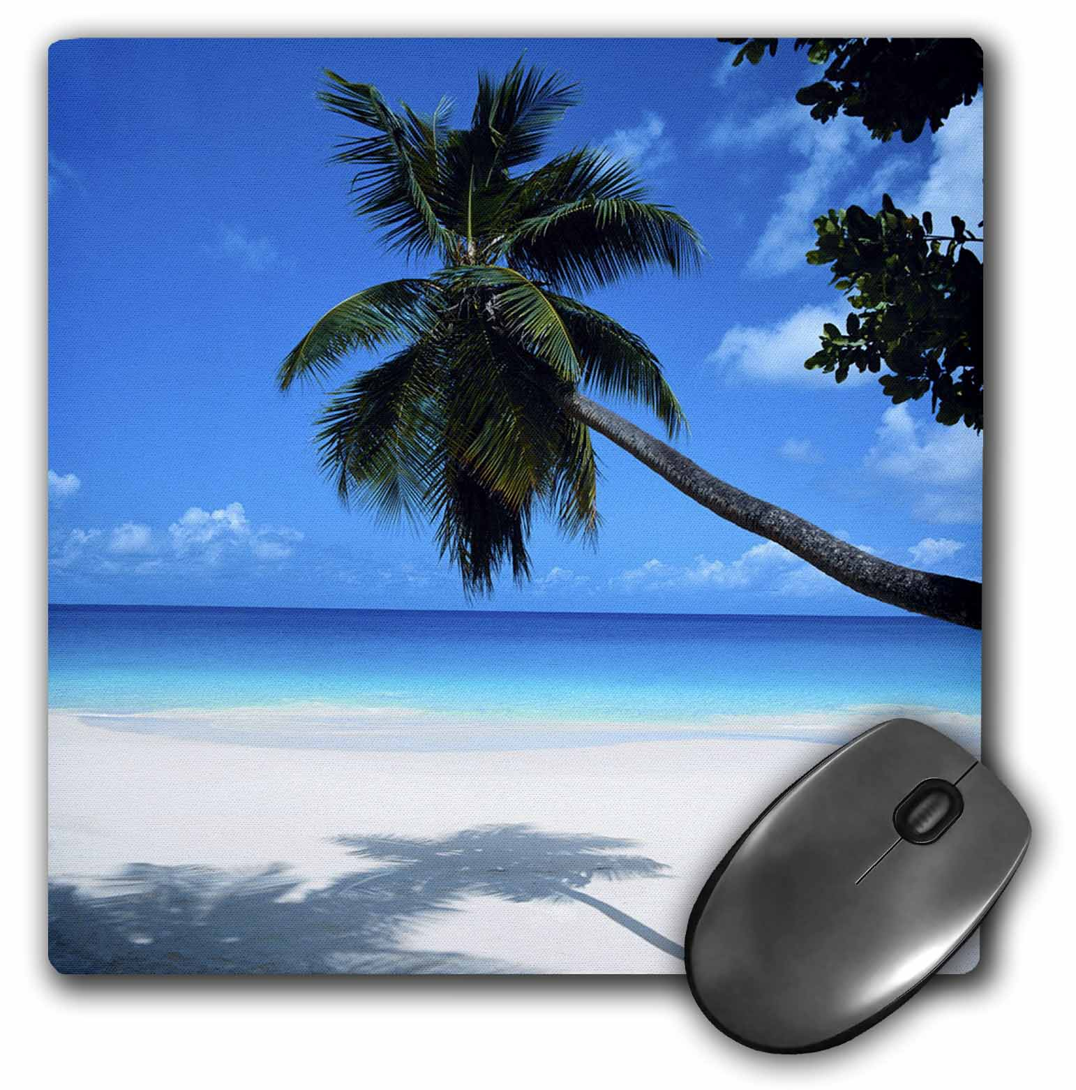 3dRose Tropical Paradise Awaits, Mouse Pad, 8 by 8 inches