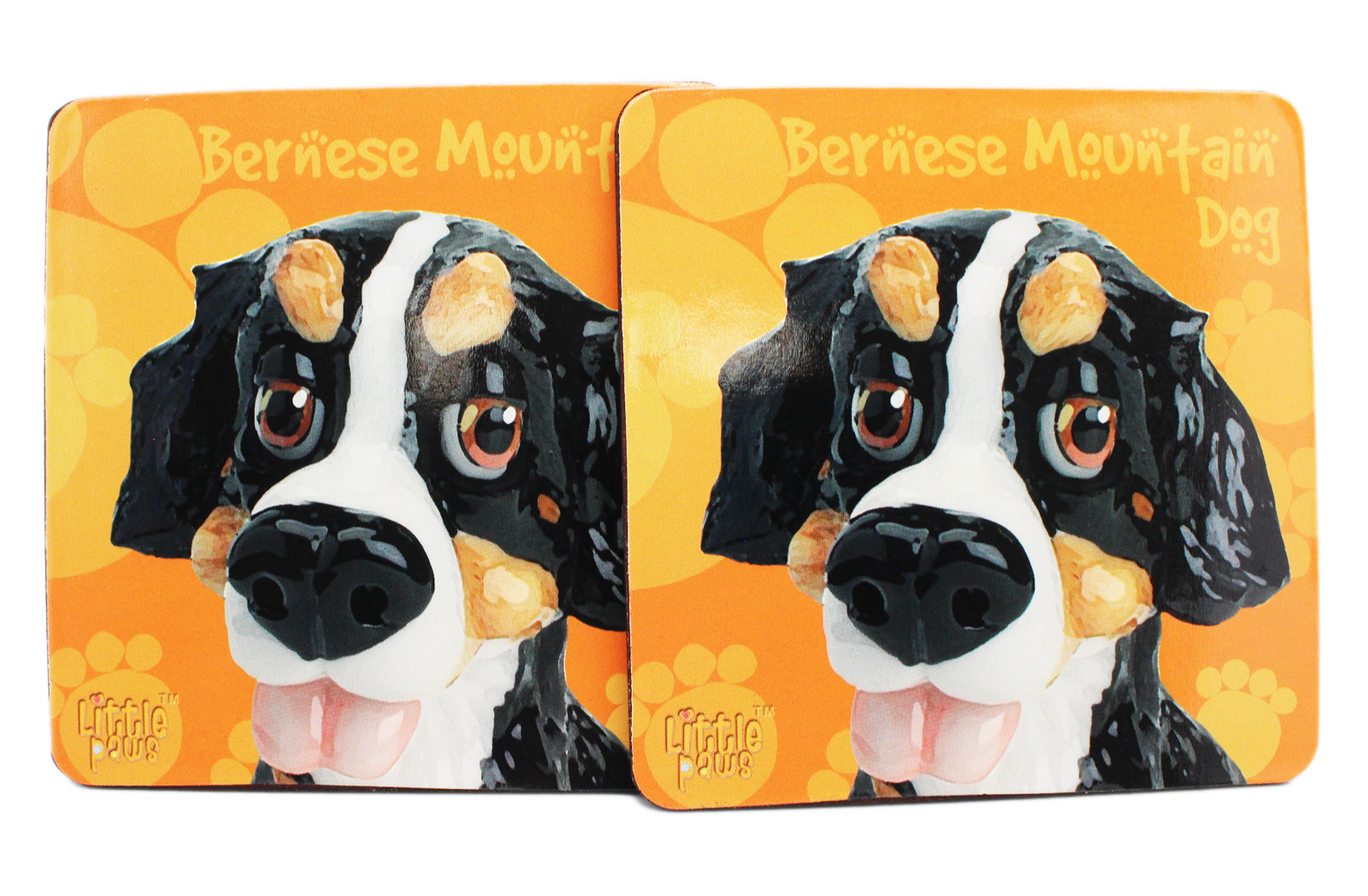 Little Paws Peppy Bernese Mountain Dog Orange Drink Coasters (2pc) by