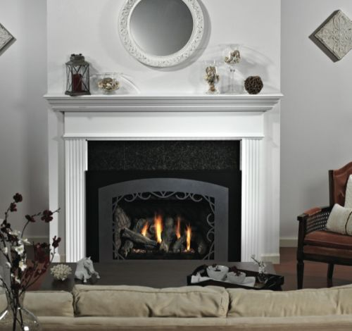 Traditional Medium Luxury DV Fireplace Insert - NG