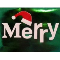 Trimmery Shiny Green Merry Christmas Cards Holiday Xmas Santa Hat