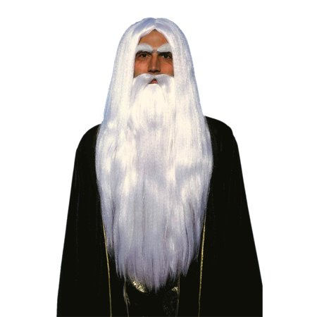 Merin Wig and Beard Set Adult Halloween Accessory (Zz Top Beard Halloween)