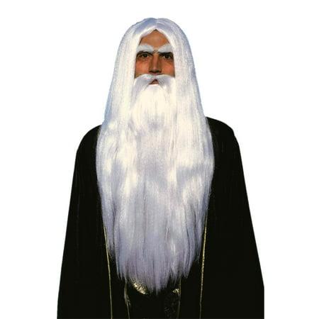 Merin Wig and Beard Set Adult Halloween Accessory - Wig Set
