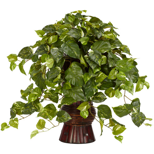 Pothos with Bamboo Vase Silk Plant