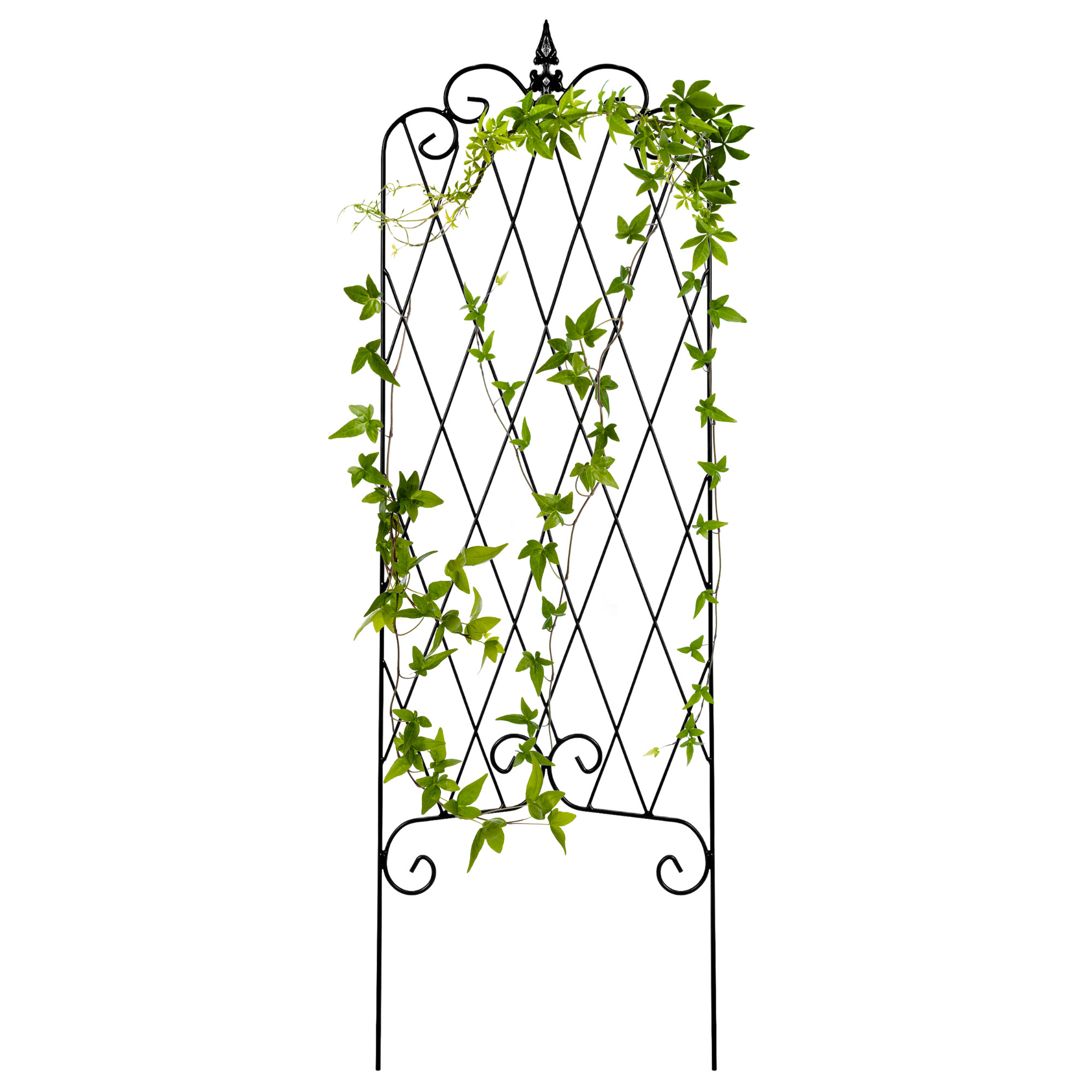 Best Choice Products 46x15in Rustproof Iron Lattice Garden Trellis Fence Panel for Climbing Plants w/ Finial - Black