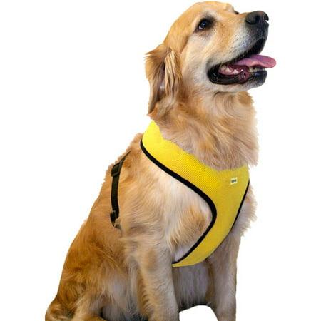 Walmart Dog Collars