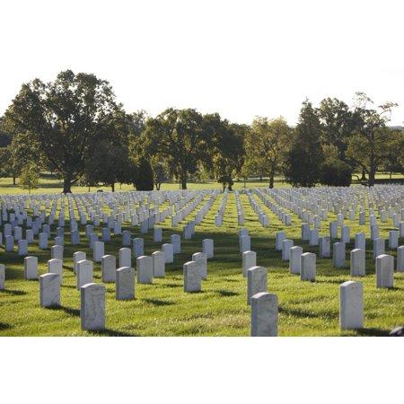 Arlington National Cemetery Arlington Virginia Usa Canvas Art   Terry Moorestocktrek Images  35 X 23