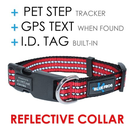 Blue Frog Track N Guard Dog Collar (Best Dog Tracking Collar)