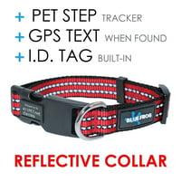 All Dog Collars & Leashes - Walmart com