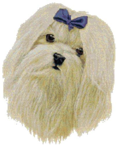 Maltese Portrait Dog Counted Cross Stitch Pattern