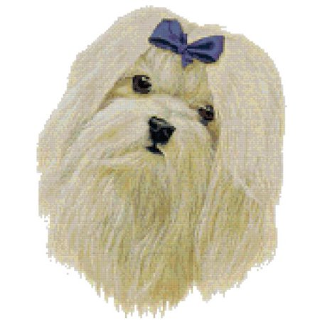 Maltese Portrait Dog Counted Cross Stitch Pattern