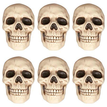 Skeleton Skull Decoration 6-Pack Halloween Party Tabletop Prop Decor Seasons - Skull Party Decorations